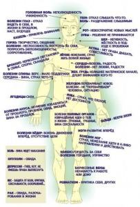 Психосоматика по Синельникову - таблица заболеваний: причины и психология болезней, мастопатия и аппендицит, цистит и другие заболевания