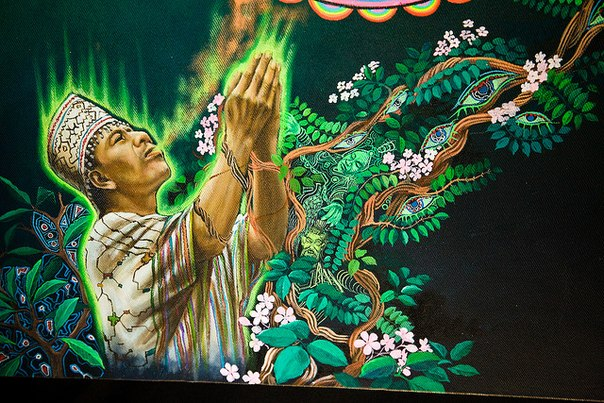 Курандерос - шаман аяваски