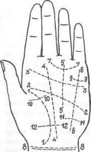 изображение линий руки