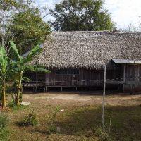 Дом шамана