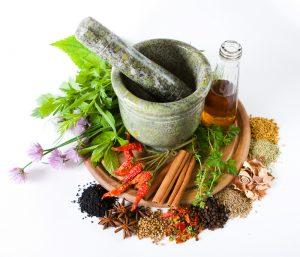Лекарственные травы от ожогов и ран