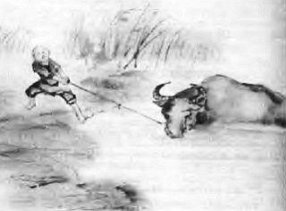 Поиски буйвола - поиски себя