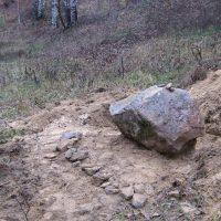 Живой камень, но уже без лопаты