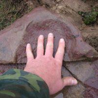 Мокрый камень