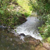 Живая вода земли