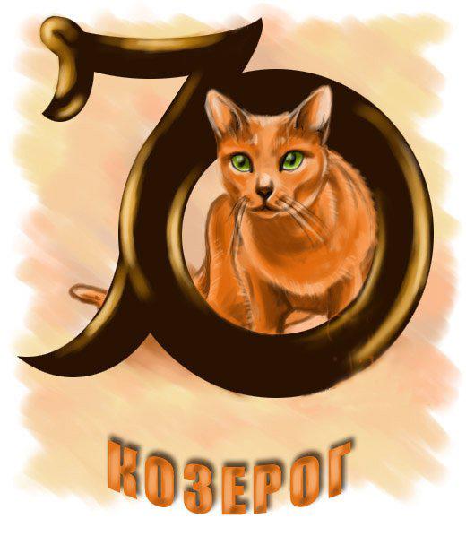 Козерог-кот гороскоп