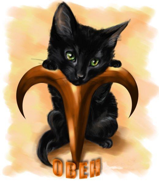 по гороскопу кто подходит коту