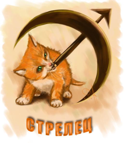 Гороскоп на 2017 кот стрелец