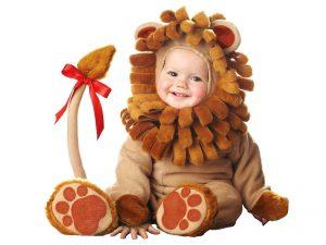 baby-lion